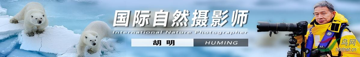G 057  胡明:抗癌路上