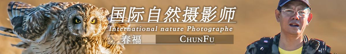 G  086 春福:生态摄影丰富了我的业余生活
