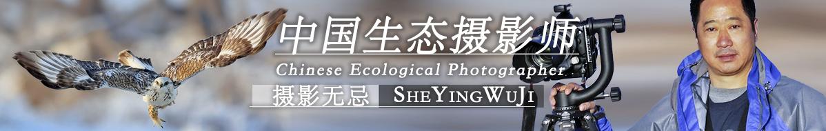 Z  059  劉國林:沿著大師之路前行