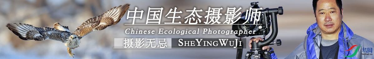 Z  059  刘国林:沿着大师之路前行